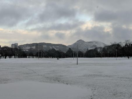 Hannah - The Meadows in the snow