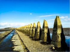 Cramond island (credit and copyright: Andrew Palmer)